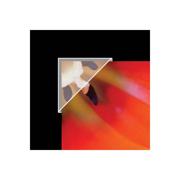 Polypropylene Mounting/ Framing Corners, .625'' Standard View