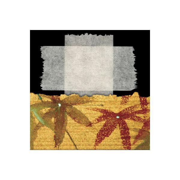 Mounting/Hinging Tissue
